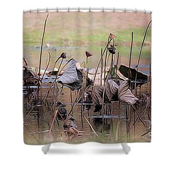 Pods At Sunset Shower Curtain