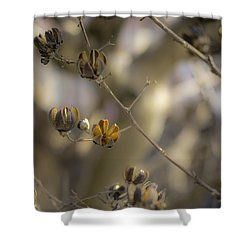 Pods Shower Curtain