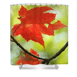Shower Curtain featuring the photograph Poesie D'automne  by Aimelle