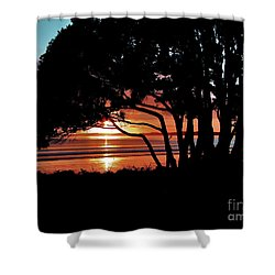 Pohutakawa Sunrise Shower Curtain