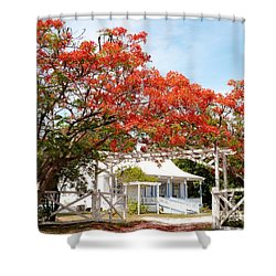 Poinciana Cottage Shower Curtain