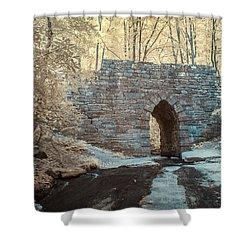 Shower Curtain featuring the photograph Poinsett Bridge-ir-10 by Joye Ardyn Durham