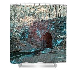 Shower Curtain featuring the photograph Poinsett Bridge-ir-4 by Joye Ardyn Durham