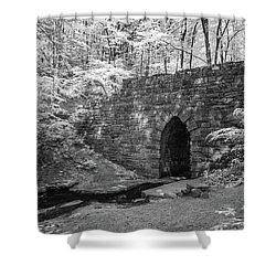 Shower Curtain featuring the photograph Poinsett Bridge-ir-5 by Joye Ardyn Durham