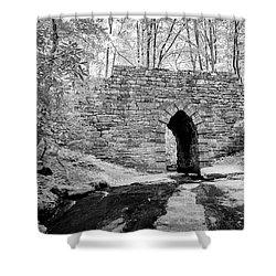 Shower Curtain featuring the photograph Poinsett Bridge-ir-7 by Joye Ardyn Durham