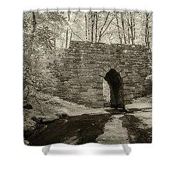 Shower Curtain featuring the photograph Poinsett Bridge-ir-8 by Joye Ardyn Durham