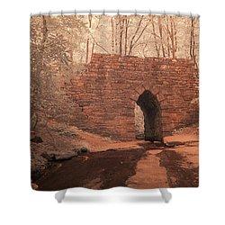Shower Curtain featuring the photograph Poinsett Bridge-ir-9 by Joye Ardyn Durham