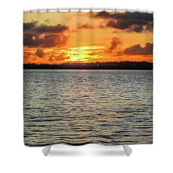 Point Chevalier Beach, Auckland, New Zealand Shower Curtain
