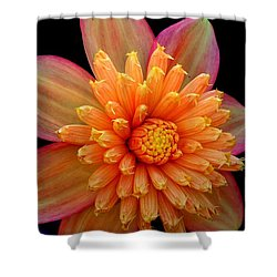 Point Defiance Dahlia Shower Curtain by Karen Molenaar Terrell