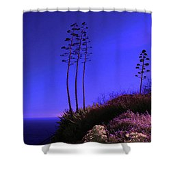 Shower Curtain featuring the photograph Point Fermin In Infrared by Randall Nyhof