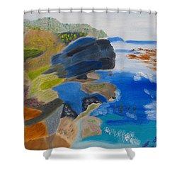 Cliffs Of Point Lobos Ca Shower Curtain