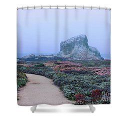 Point Piedras Blancas Shower Curtain