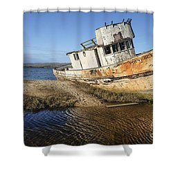 Point Reyes Shipwreck Shower Curtain by Amy Fearn