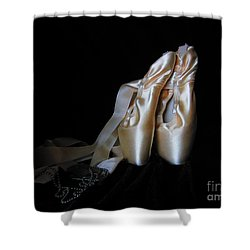 Point Shoes And Dog Tags Shower Curtain by Laurianna Taylor