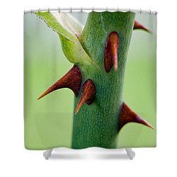 Pointed Personality Shower Curtain by Christopher Holmes