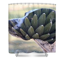 Pointing Skywards 1 Shower Curtain