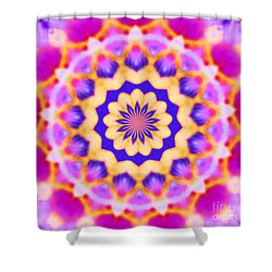 Shower Curtain featuring the photograph Points Of Light Purple Rose by Shirley Moravec