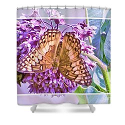 Poised Butterfly Shower Curtain