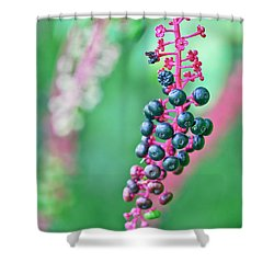 Poke Berries Shower Curtain