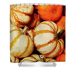 Pokemon Pumpkins Shower Curtain