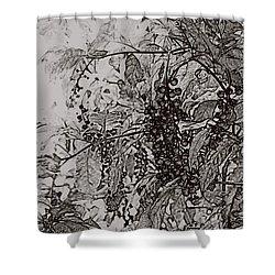Pokeweed Shower Curtain