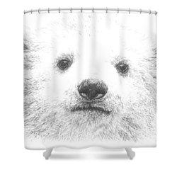 Polar Bear Cub Shower Curtain