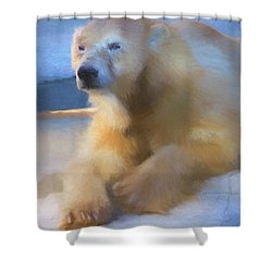 Polar Bear In Chalk Shower Curtain