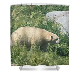 Polar Bear Shower Curtain