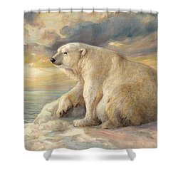 Polar Bear Rests On The Ice - Arctic Alaska Shower Curtain