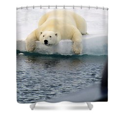 Polar Bear Says 'huh' Shower Curtain