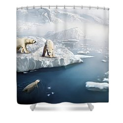 Polar Bears Shower Curtain