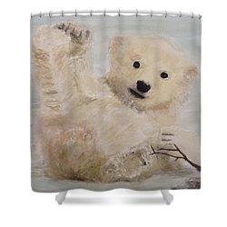 Polar Slide Shower Curtain by Annie Poitras