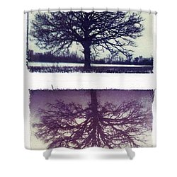 Polaroid Transfer Tree Shower Curtain by Jane Linders
