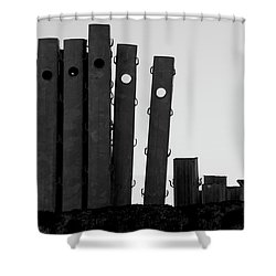 Pole To Pole Shower Curtain by Colleen Williams