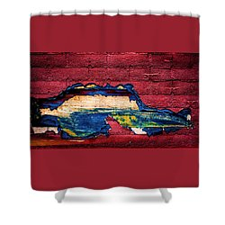 Police Car Abstract Shower Curtain