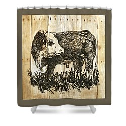 Shower Curtain featuring the photograph Polled Hereford Bull 11 by Larry Campbell