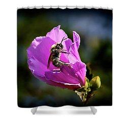 Pollen Clad Shower Curtain