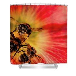 Pollination Shower Curtain by Verena - Timschenko