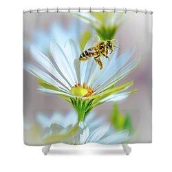 Pollinator Shower Curtain by Mark Dunton