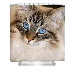 Polly Shower Curtain by Clayton Bruster
