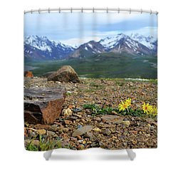 Shower Curtain featuring the photograph Polychrome Pass, Denali by Zawhaus Photography