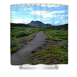 Shower Curtain featuring the photograph Polychrome Pass Trail, Denali by Zawhaus Photography