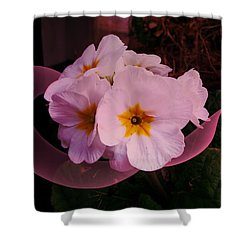 Polypink Shower Curtain