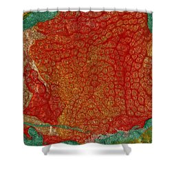 Pomegranate Blossom Abstract Shower Curtain