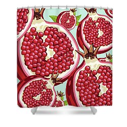 Pomegranate   Shower Curtain