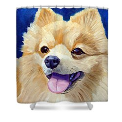 Pomeranian Shower Curtain by Lyn Cook