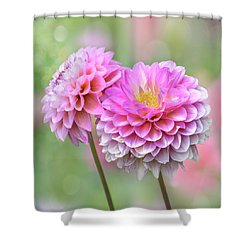 Shower Curtain featuring the photograph Pompon Dahlias by John Poon