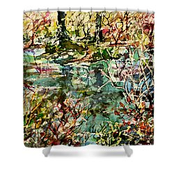 Shower Curtain featuring the painting Pond And Beyond by Alfred Motzer
