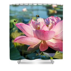 Pond Bees Shower Curtain