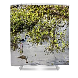 Pond Birdie Shower Curtain